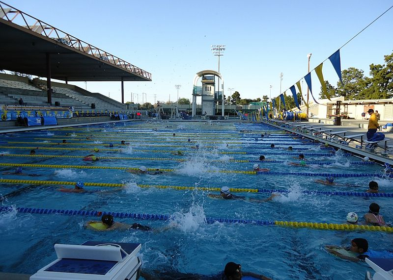 Poop in the water cdc finds fecal matter in public - How long after pool shock before swim ...