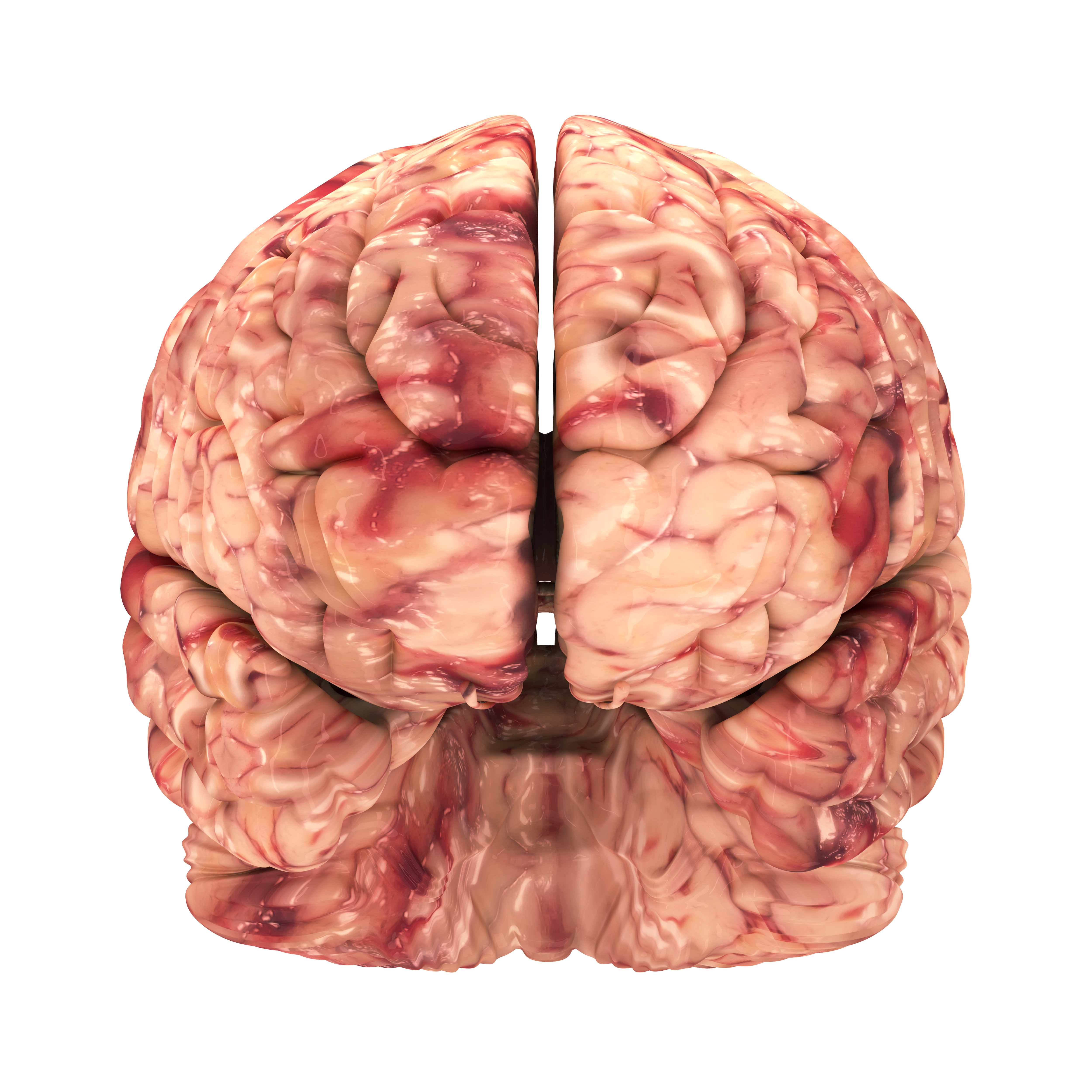 Where Is God Located In The Brain  Importance Of Religion