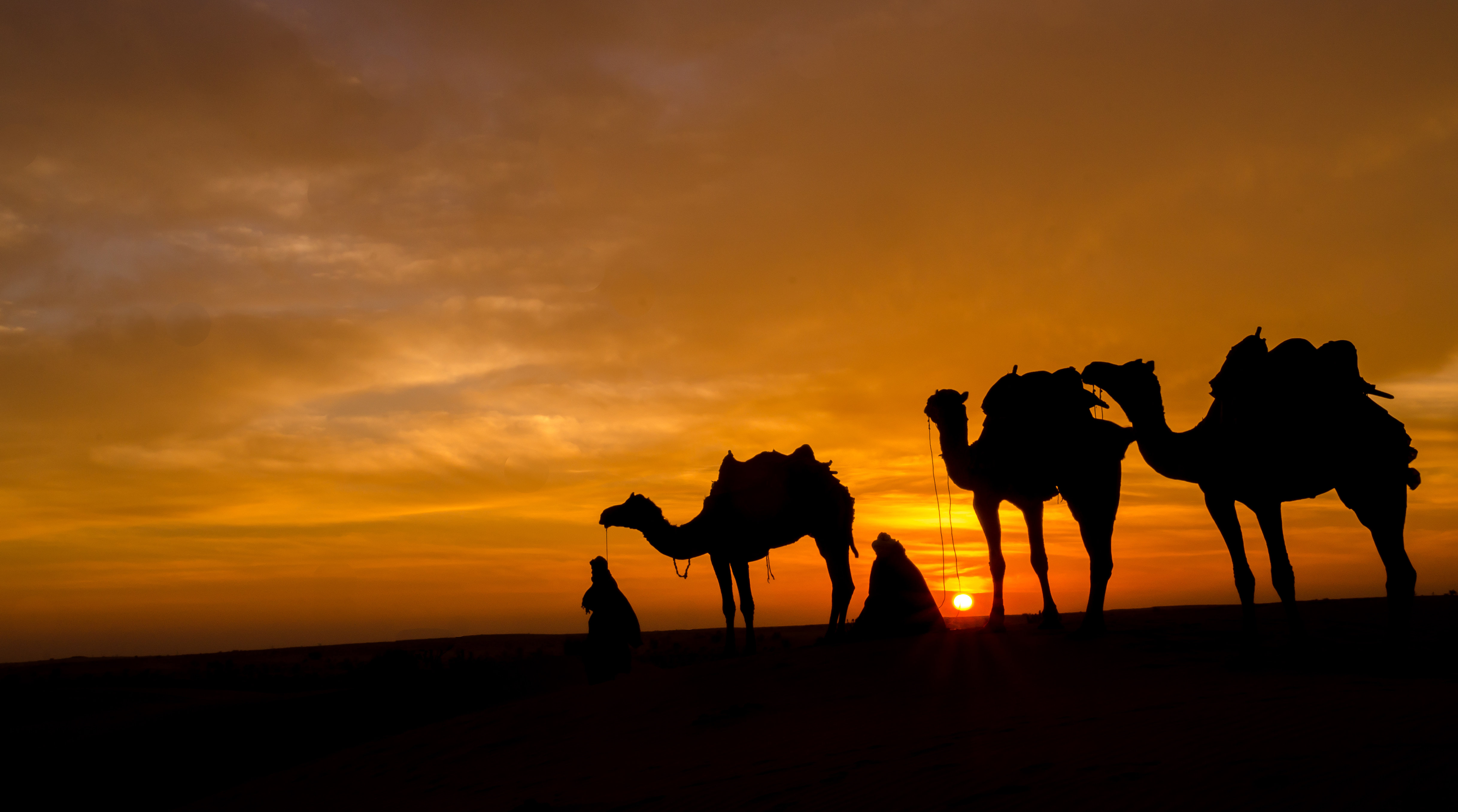 Cdc Confirms First Mers Case In Us Diseases Are Just A