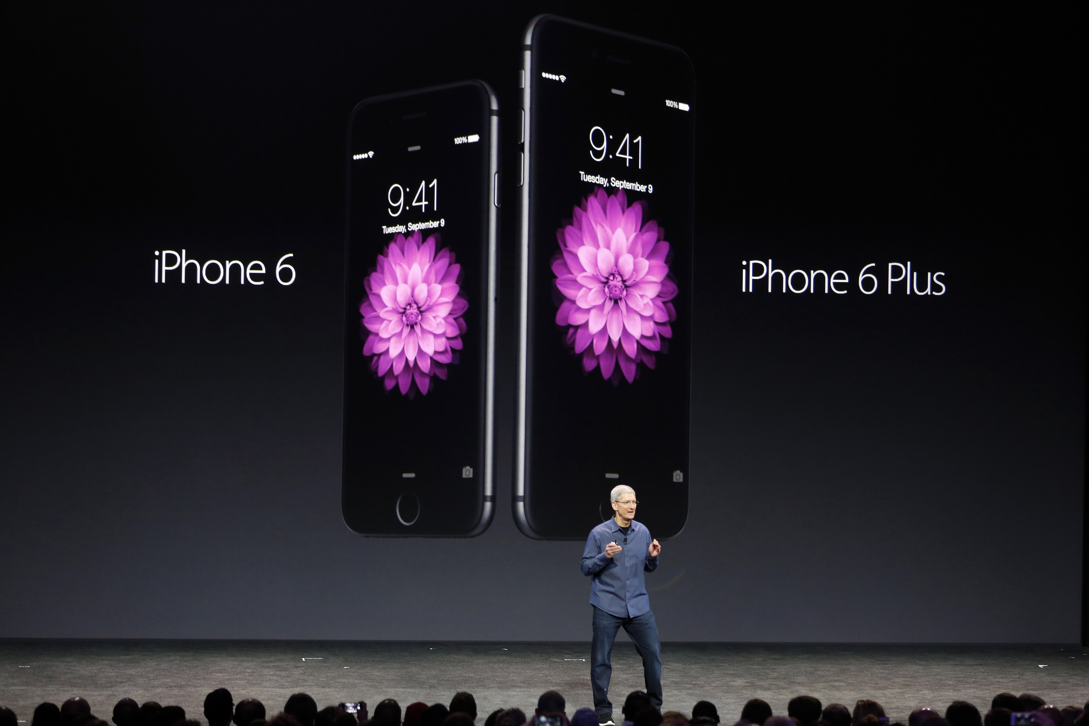 The Iphone 6 Plus Is About The Same Size As The Average American Penis-2386