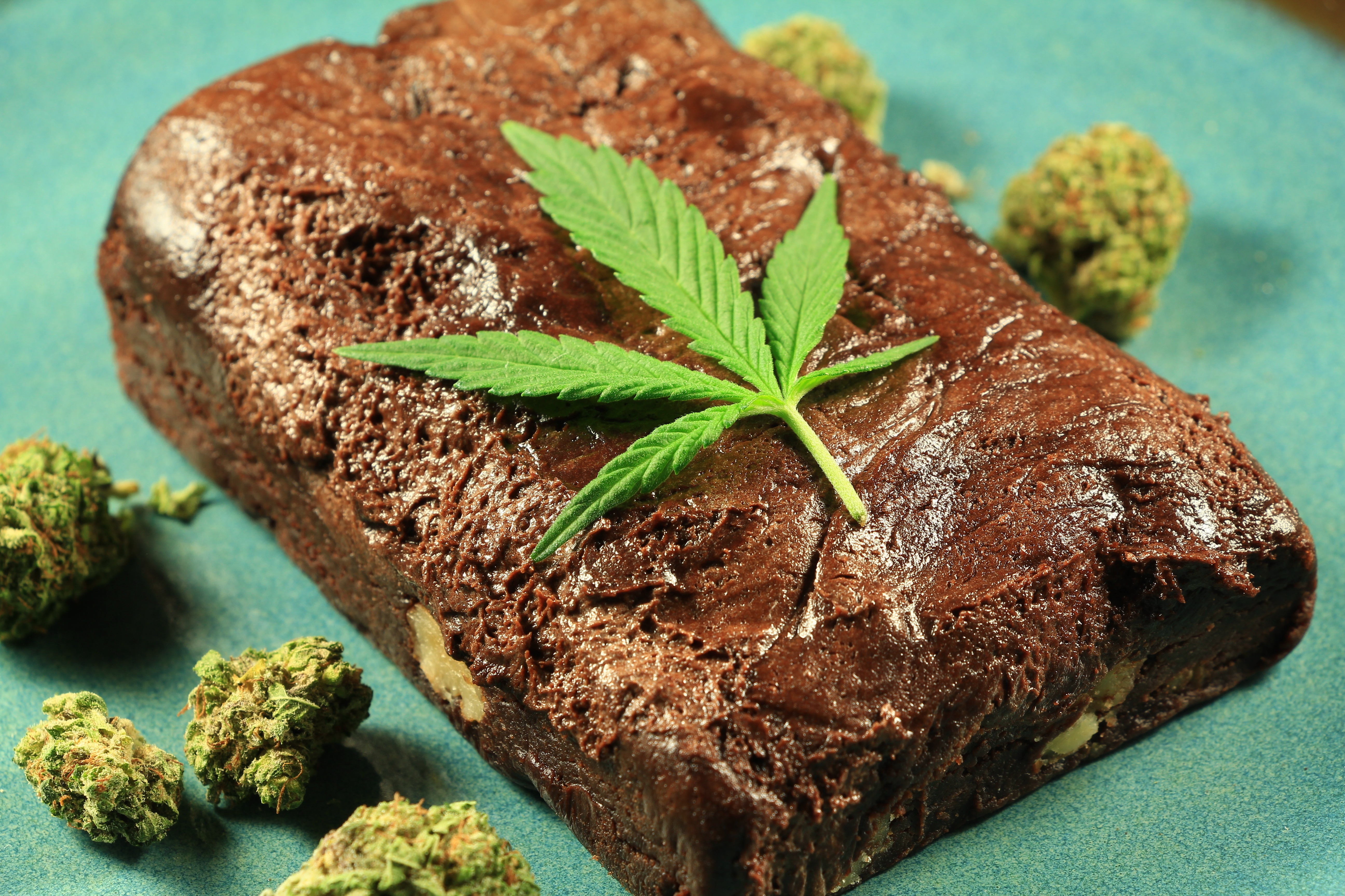 How To Make A Space Cake With Weed