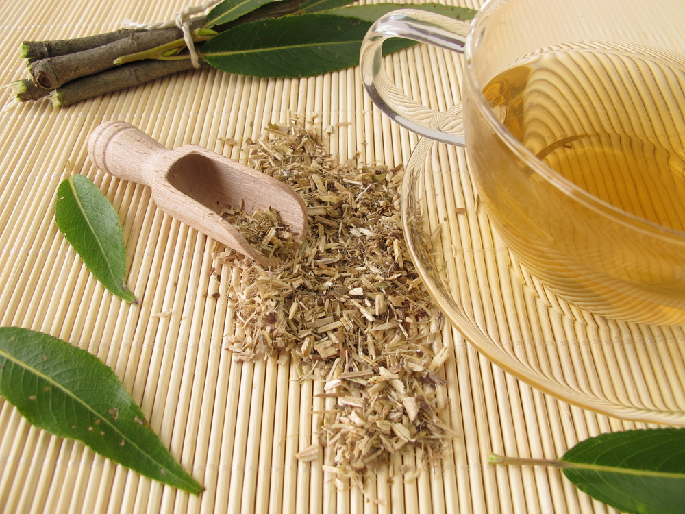 Miracle Tree: 6 Health Benefits Of Willow Bark To Get You