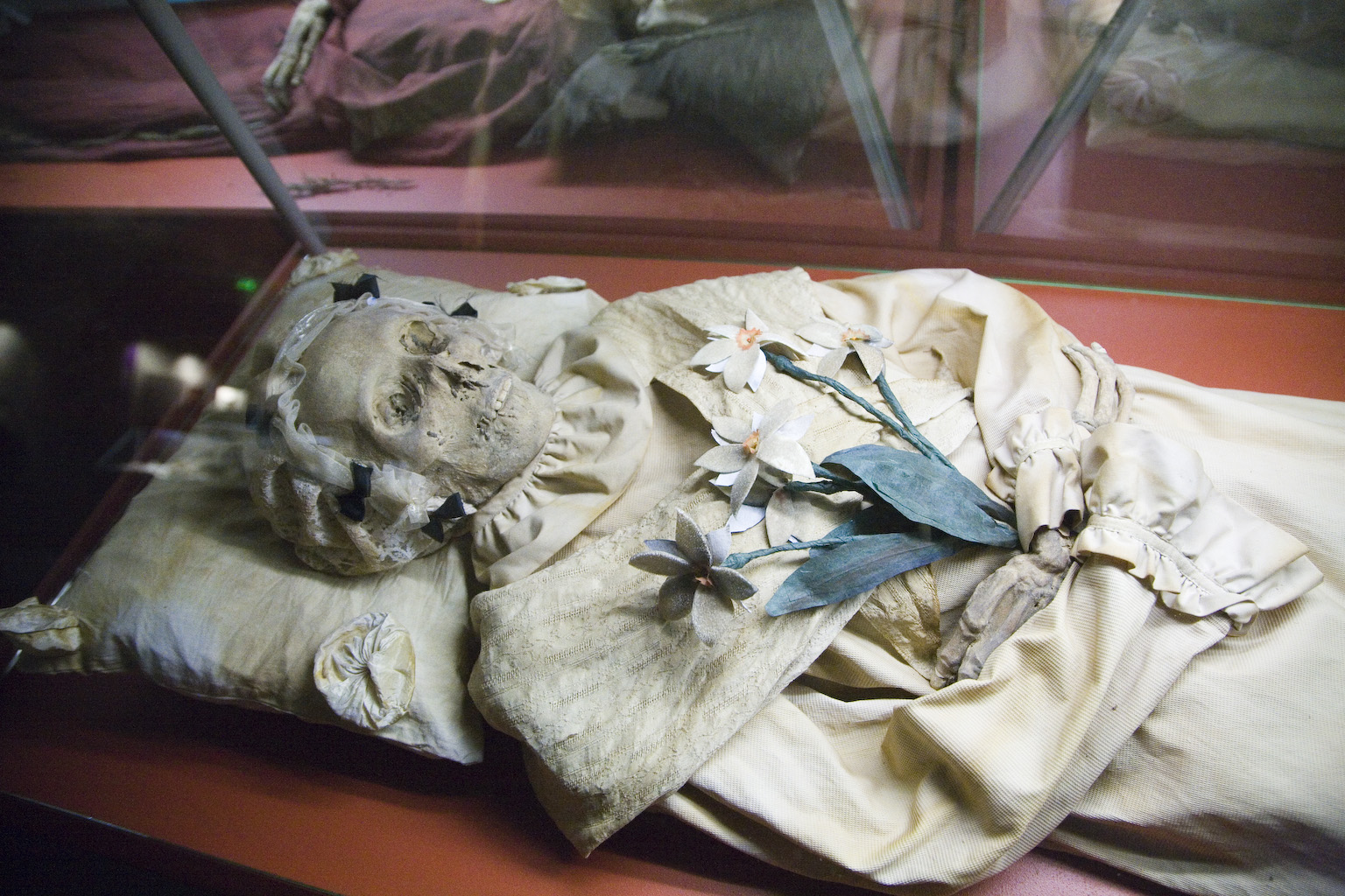 Tuberculosis Sampled From Mummies In 18th Century