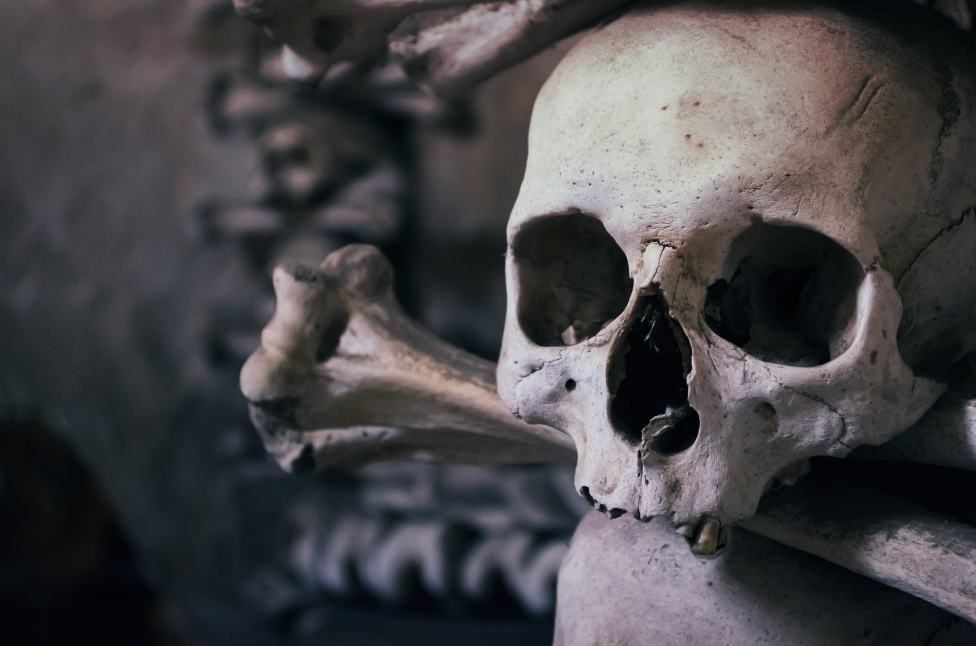 Bubonic Plague Wasn't Always So Deadly: The Mutation That ...