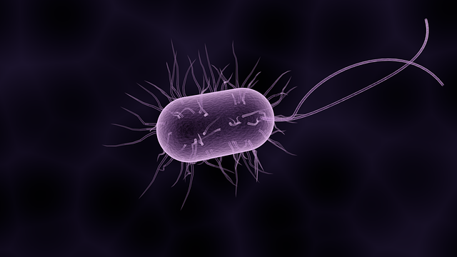 What Is Shigella? Shigellosis Outbreaks Show How