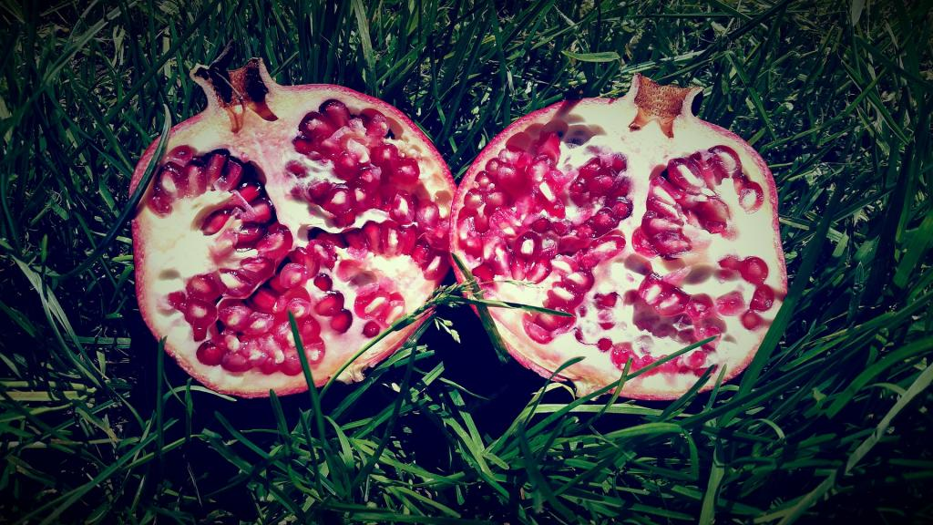 pomegranate-713487_1920