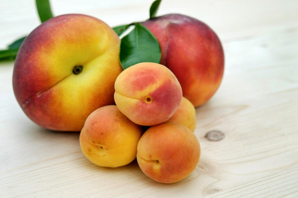 apricots and peaches