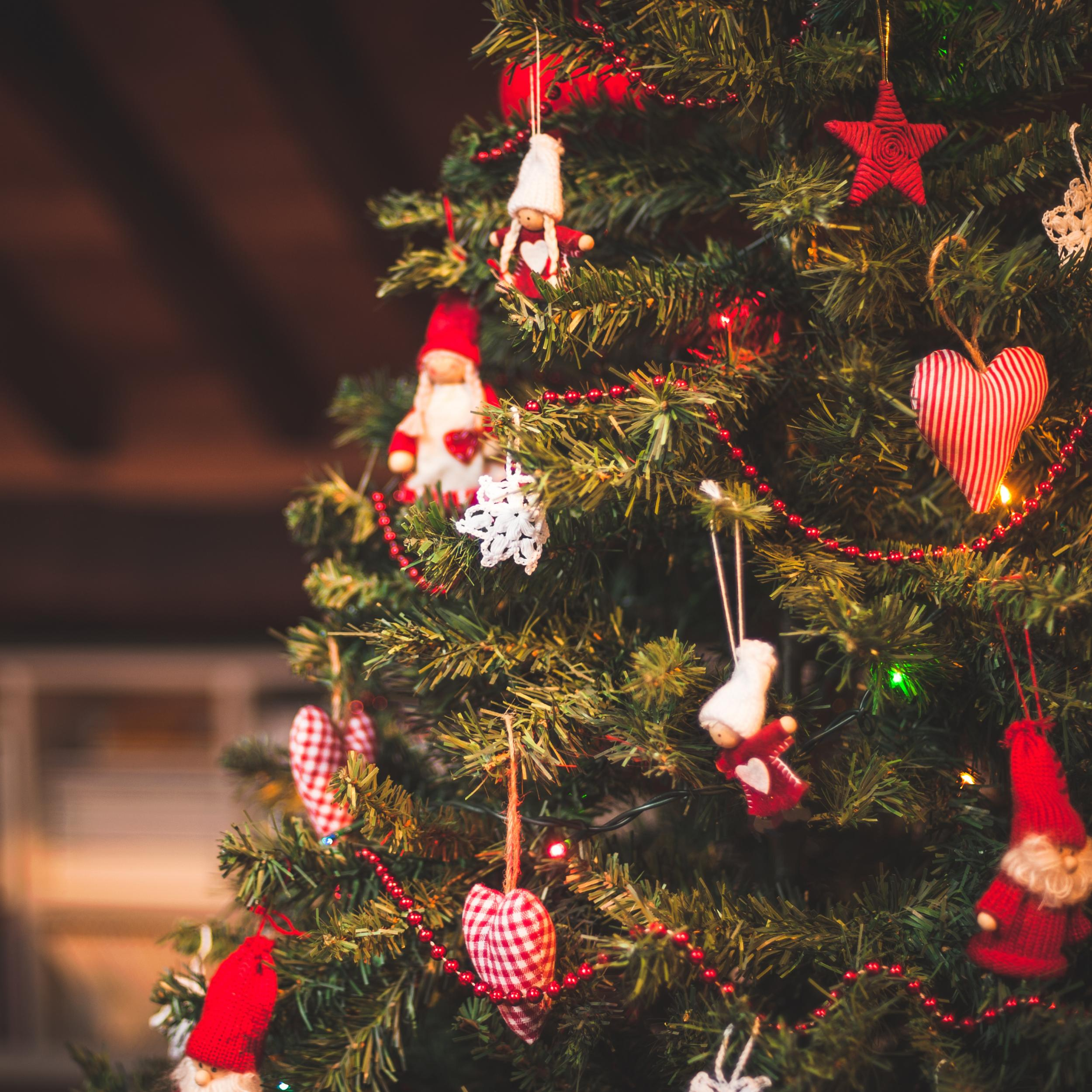 Where Does Christmas Trees Come From: Christmas Isn't Only For Christians: Secular Celebrators
