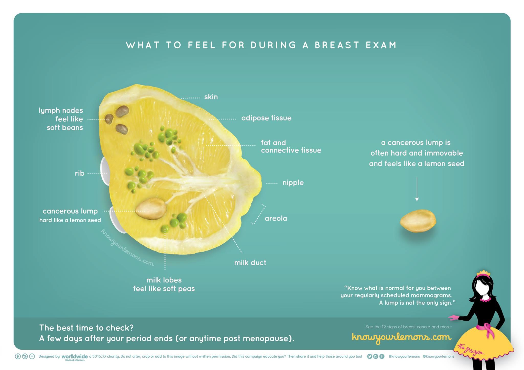 Breast Cancer Detection Know Your Lemons To Spot Disease Early