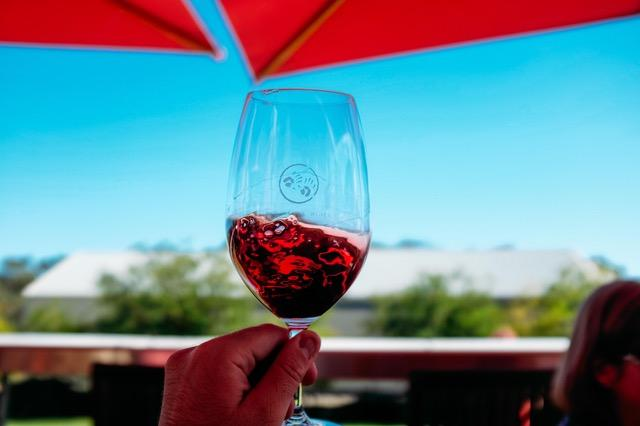 Drinking Red Wine With Type 2 Diabetes Resveratrol Benefits Heart