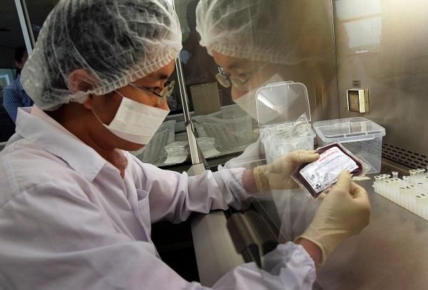 A biotechnologist processes cord blood samples to be cryopreserved at a Singapore laboratory August 26, 2005. Since 1988, stem cells have been used to treat an increasing number of diseases, including blood and metabolic disorders, immuno-deficiency ailme