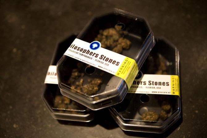 Boxes containing magic mushrooms sit on a counter at a coffee and smart shop in Rotterdam November 28, 2008.