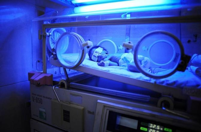 A premature baby boy lies in an incubator at maternity hospital.