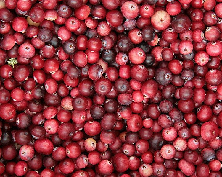 Cranberries Weaken UTI Bacteria's Ability To Be Infectious