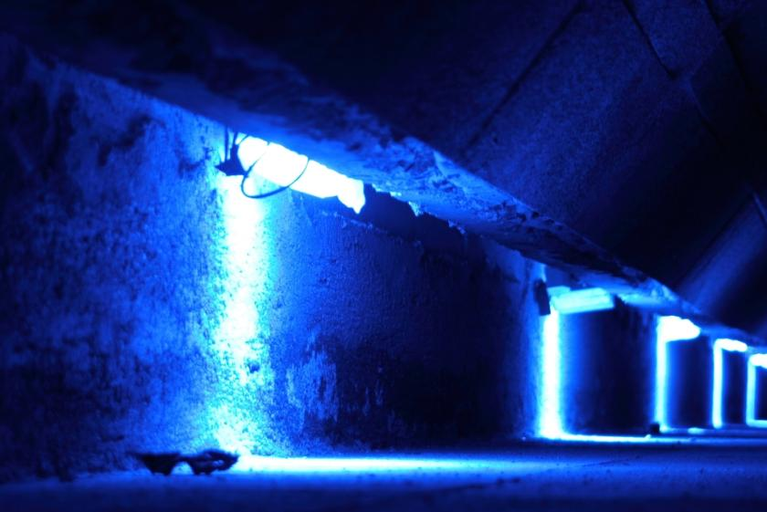 blue light improves alertness and performance during the day even
