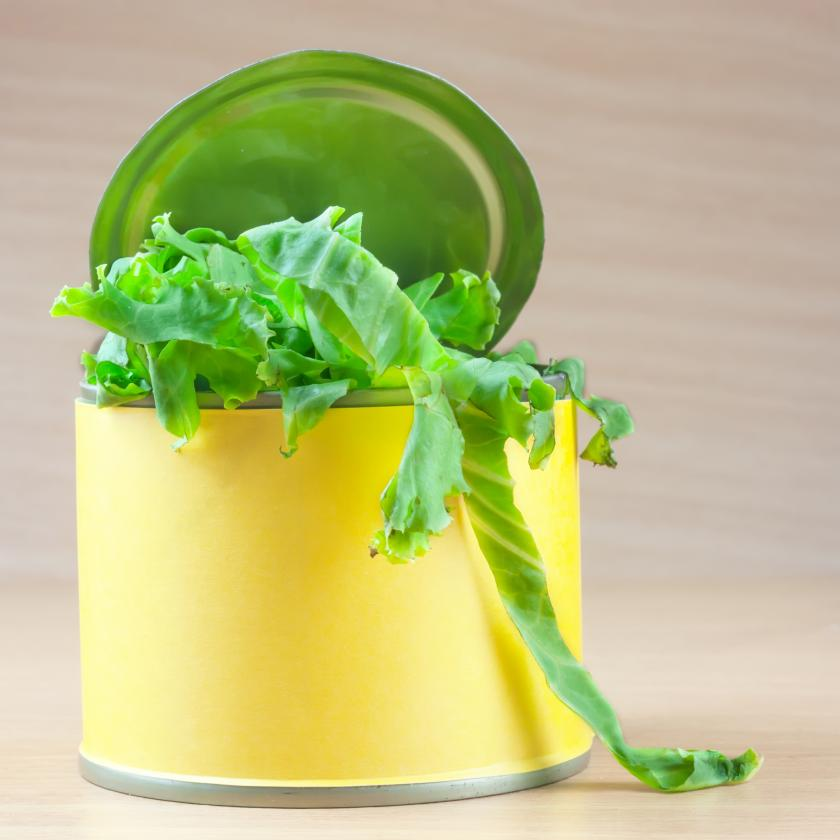 Canned Fruits And Vegetables Just As Nutritious