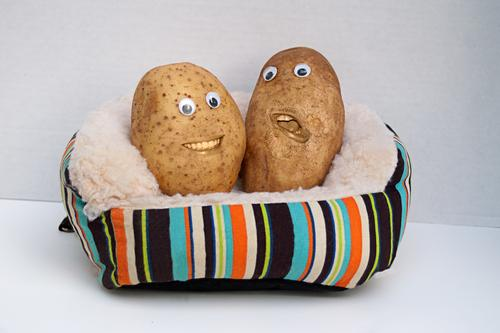 Two happy smiling potatoes sitting on a couch