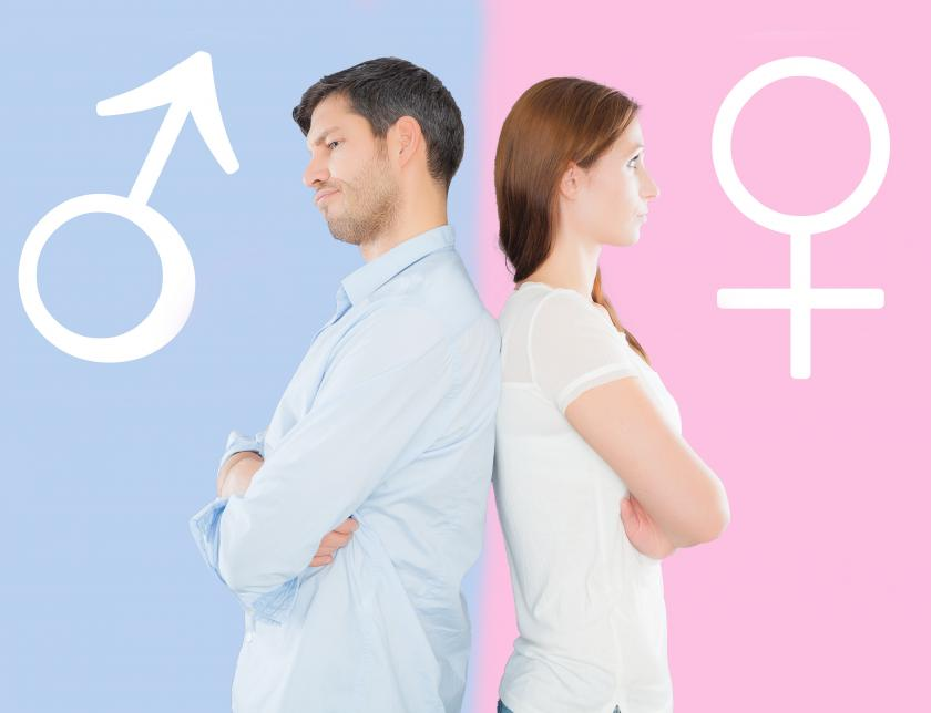 Male And Female Genders Are Maintained Throughout Life