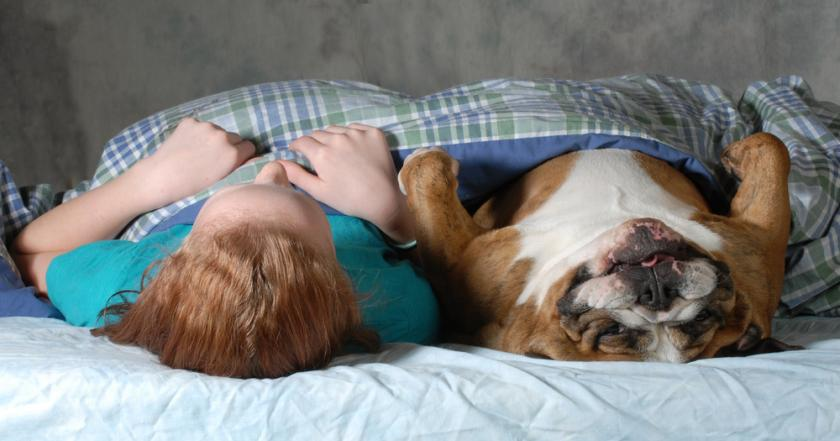Sleeping With Your Pet Could Cause You Health Problems