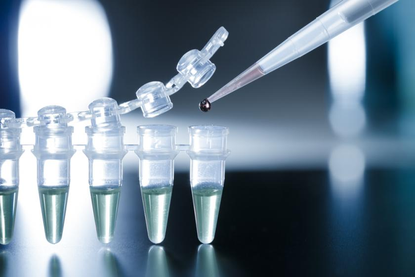 Major Stem Cell Research Study Retracted For Falsifying Data