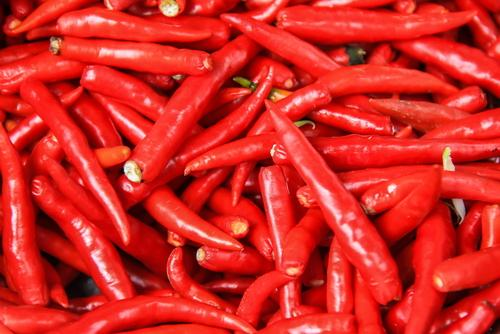 Chili Peppers Add More Than Spice Capsaicin In Peppers Shown To Reduce Gut Tumor Burden In Mice