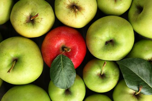 Apples Help Put Your Gut Bacteria Back Into Balance