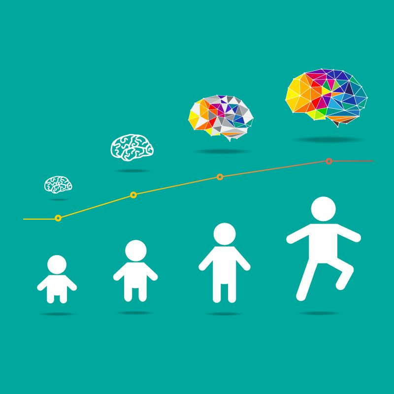 development of the childs brain Play and how it impacts early brain development clearly outlines the  but what  exactly is play and why is it so important that every child is.