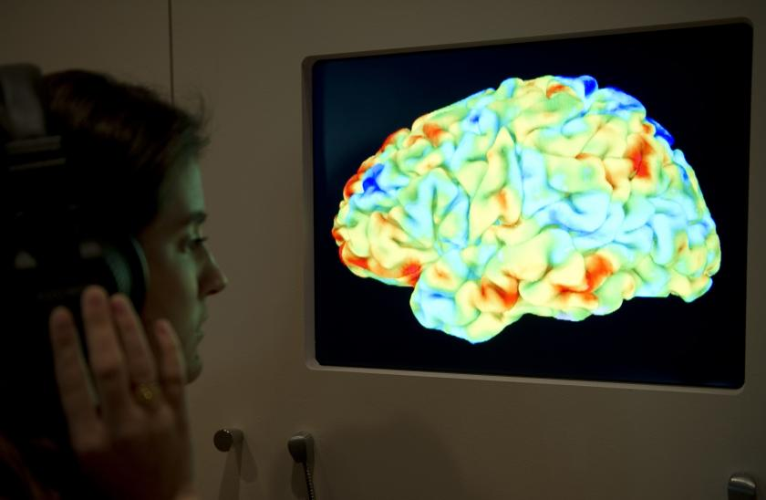 A woman looks at a functional magnetic resonance image.