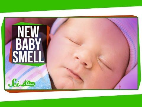 Newborn Babies May Smell Good To Moms Due To Amniotic Fluid, Vernix Caseosa