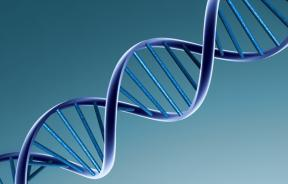 Studies Find Genetic Links to Leukemia and Endometrial Cancer