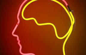 Lack of Long-Term Memory Proteins Implicated in Mental Disorder Patients