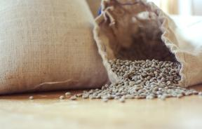 Green Coffee: Worth The Hype?
