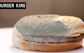 Burger King left in jar after 30 days