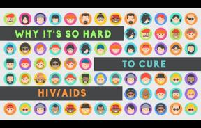 Finding A Cure For HIV: We Know It Exists, But Where?