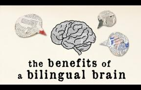 Bilingualism And Brain Health: Learning A Second Language Boosts Cognitive Function, Even At Old Age