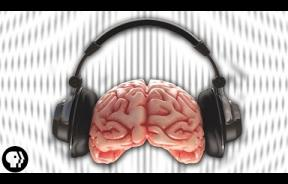 Brain Fart: How Auditory Illusions Trick Your Brain Into Hearing Something It's Not