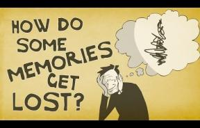 How Human Memory Works: Why The Brain Remembers And Forgets, Plus 3 Ways To Improve Memory