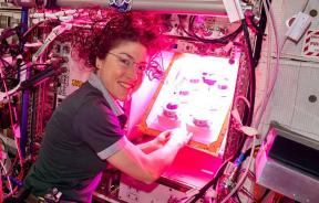 NASA astronaut Christina Koch initiates the Veg-PONDS-02 experiment on the ISS