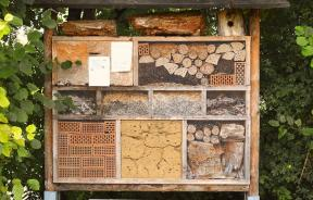 insect-house-1778906_960_720